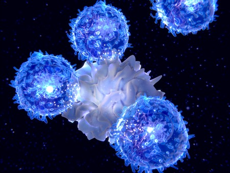 Dendritic cell presenting an antigen to T-lymphocytes. The antigen is a peptide from a tumor cell, bacteria or virus. Dendritic cells present antigens to lymphocytes activating an immune response.