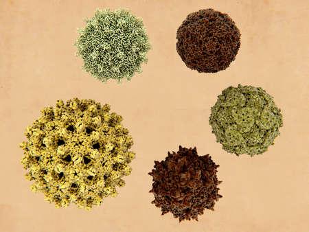 5 human-infecting viruses: clockwise from the bottom left: influenza virus, coxsackie virus, enterovirus D68, poliovirus, adeno-associated virus. Фото со стока