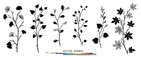 Leaves and branches set Isolated Floral Design Elements Vector illustrations. Botanical monochrome black and white silhouette clipart Perfect for wedding invitations, greeting cards, blogs, posters Leaves and branches set collection Ginkgo biloba isolated realistic vector in black and white color botanical illustration Floral creator constructor for your design
