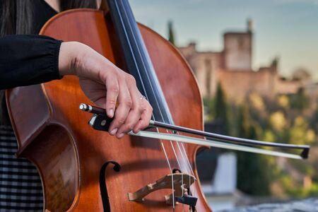 Woman with her cello Stock Photo