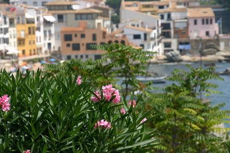 spanish village: Spanish village