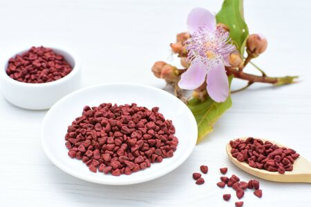 Achiote, annatto, bixin, urucú or onoto is a natural red pigment for colorants and cooking displayed in seed containers