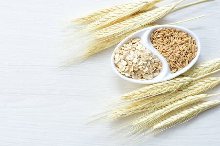 Avena sativa - Natural grain oats and flaked oats, displayed in containers showing the comparison of the 2 oats 写真素材