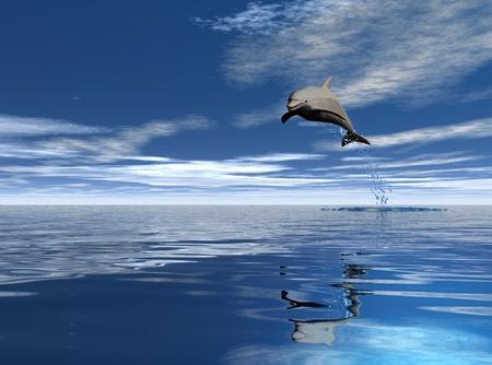 jump dolphin