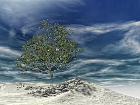 hojas: glass tree