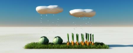 surprising: surprising growing vegetables in the desert Stock Photo
