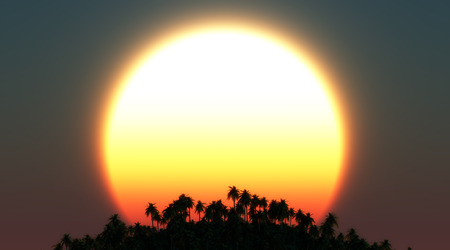 tropical sunset: illustration of tropical sunset Stock Photo