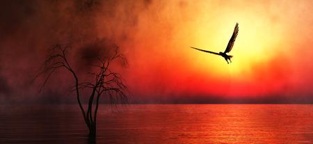 aigle: Aigle qui vole dans les nuages ??à l'aube