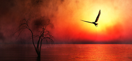 Eagle flying in the clouds at dawn Imagens