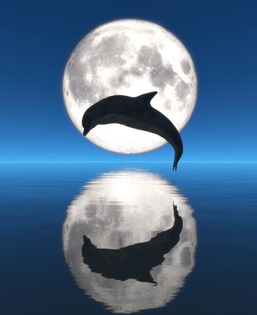 dolphin, moon and reflection Standard-Bild