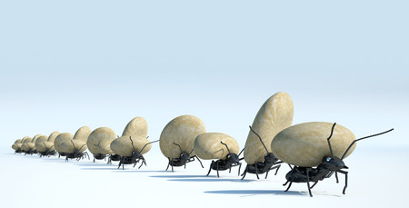 concept work, team of ants moving stones
