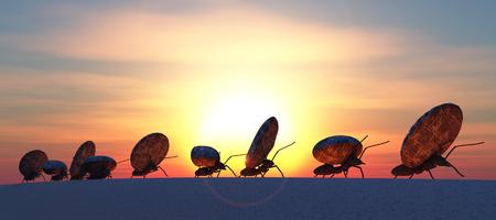 hormiga: concepto de trabajo, equipo de hormigas que se mueven piedras