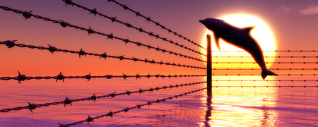 prison guard: 3d illustration of barbed wire and leaping dolphin for free Stock Photo