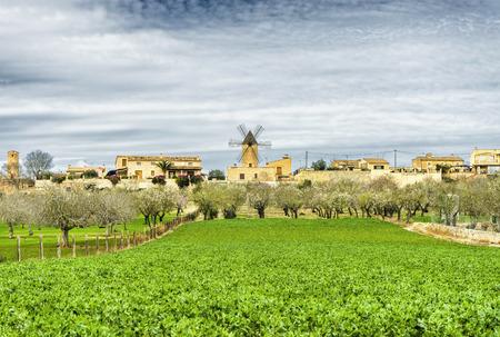 mallorca: traditional windmill in Mallorca, Balearic Islands, Spain