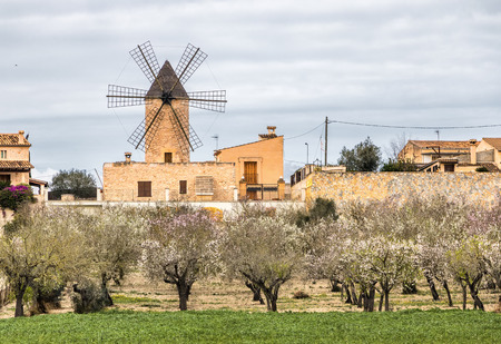 traditional windmill: traditional windmill in Mallorca, Balearic Islands, Spain
