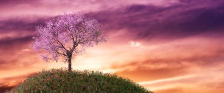 3d illustrazione di alberi di mandorle in un campo erboso