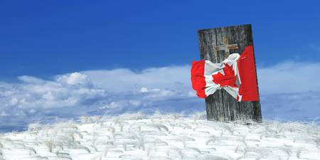 3d illustration of the flag of canada and casket