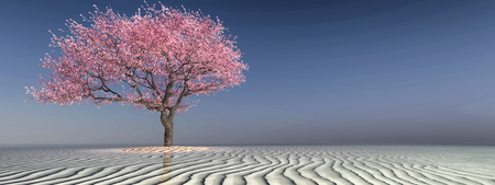 3d illustration of a tree on the beach