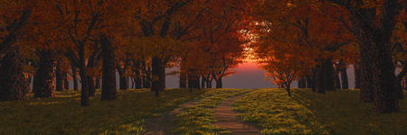 3d illustration of a road in the forest at sunset Stock Photo