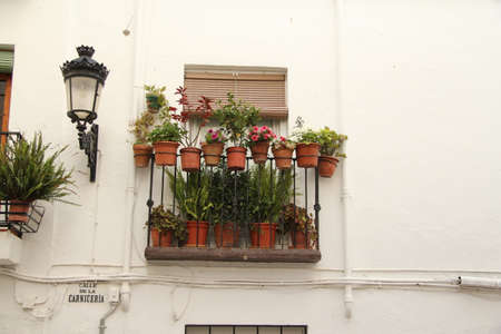 andalusian: Andalusian balcony
