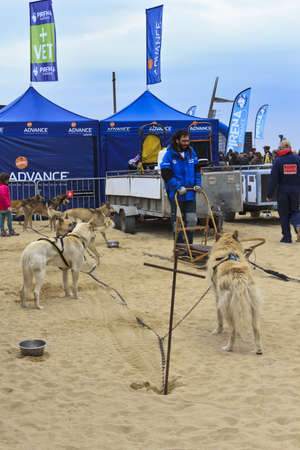 mushing: Party for the 22 th edition of the Advance Pirena