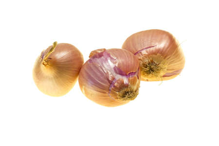 Onions isolated on white background Stock Photo - 13147758