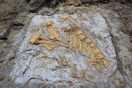 Deposit archaeological Blasi, dinosaur fossil bones Blasisaurus Canudoi, Huesca, Spain  Editorial