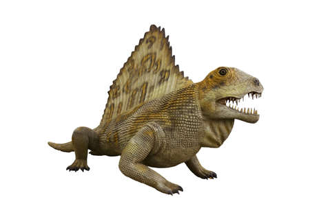 Dinosaur isolated on white background