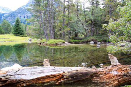 inhospitable: The forest is reflected in the calm waters of a high mountain river Stock Photo