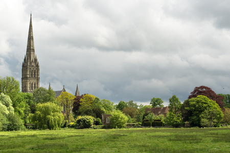 Green landscape with Salisbury Cathedral in the background