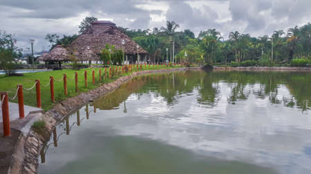 rustic house next to a pond in the jungle surrounded by vegetation