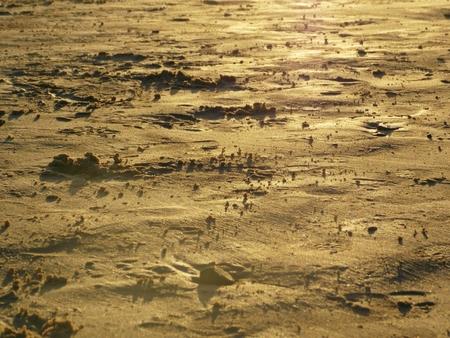 beautiful sand sunset landscape Stock Photo - 26023290