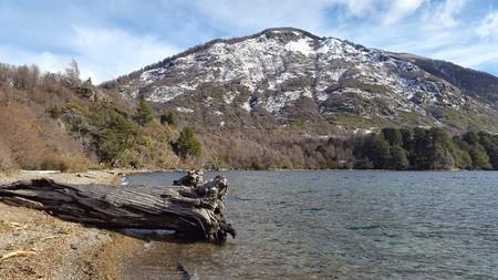 brook trout: Mountain lake scenery