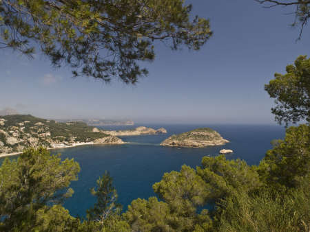 capes: Mediterranean coastline with capes and islands framed with the branches of some pine trees