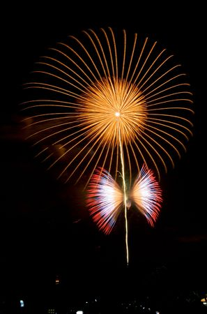bangkok night: Flower and butterfly Firework 2006 for the King of Thailand by Seiko Stock Photo