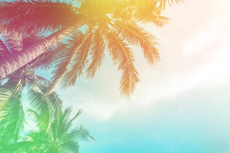 Tropical palm tree with colorful bokeh sun light on sunset sky cloud abstract background. Summer vacation and nature travel adventure concept. Vintage tone filter effect color style. 版權商用圖片