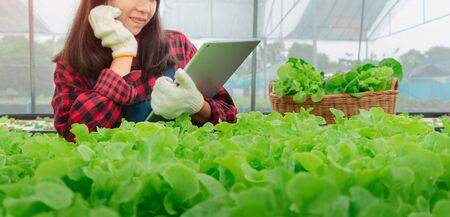 Young woman farmer happy working with tablet. The owner of a small business concept,Higher sales