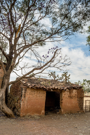 adobe wall: Vertical photo on color of an old and ruined adobe house beside a tree Stock Photo