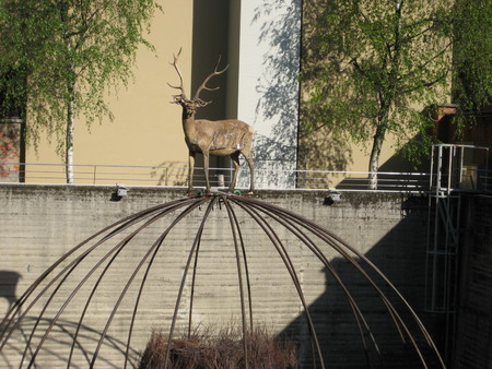 deer on a sphere of iron wire