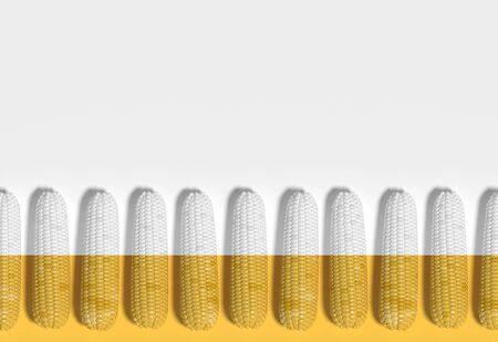 Many corn cobs lie in a row on a yellow and white cross section background. Creative idea, decorative conceptual composition. Modern Art. 3D rendering.