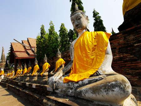 Row of buddhas wearing yellow robes Ayutthaya, 版權商用圖片