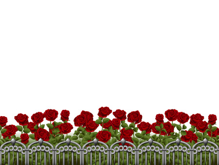 femine: Isolated rosegarden with steel fence in the front. Illustration