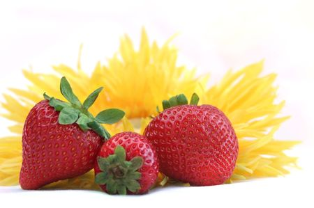 fresh strawberries and bright sunflower against a white background. photo
