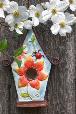 Cute little birdhouse on rustic wooden fence with beautiful white Dogwood blooms  photo