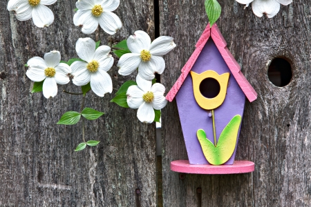 summer house: Birdhouse on rustic wooden fence with Dogwoods Stock Photo