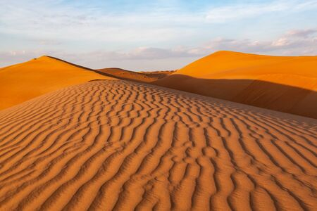 Impressive ripples in red dunes of Oman's Wahiba Sands desert in warm late afternoon light