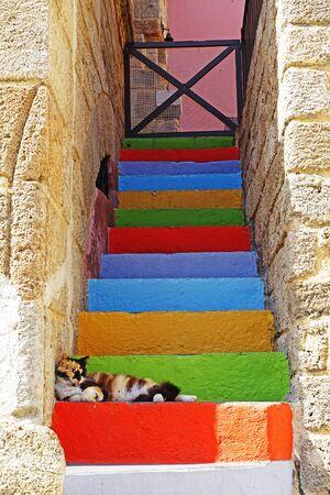 Bunte traditionelle Treppe in Rhodos-Stadt mit Katze Standard-Bild