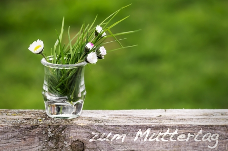 flowers for mothers day 002 photo