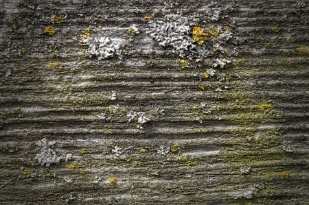 Close-ups of various materials as a background, texture or pattern for a variety of applications photo