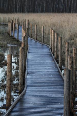 Unobstructed elevated wooden boardwalk nature trail in Vanhankaupunginlahti, a Ramsar waterfowl habitat in Helsinki, Finland.